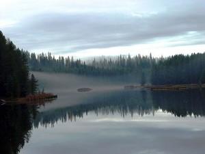 Moose Creek Reservoir Near Bovill