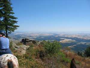 Moscow Mountain - View from Summit