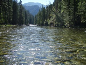 Selway River
