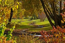 University of Idaho Arboretum