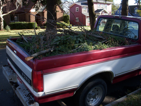 Pickup Truck with branches