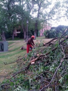 Storm Damage - UI Campus 8-13-14