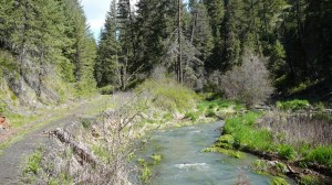 Little Bear Creek